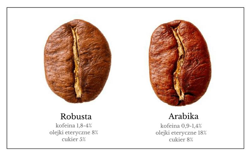 arabika vs robusta roznice