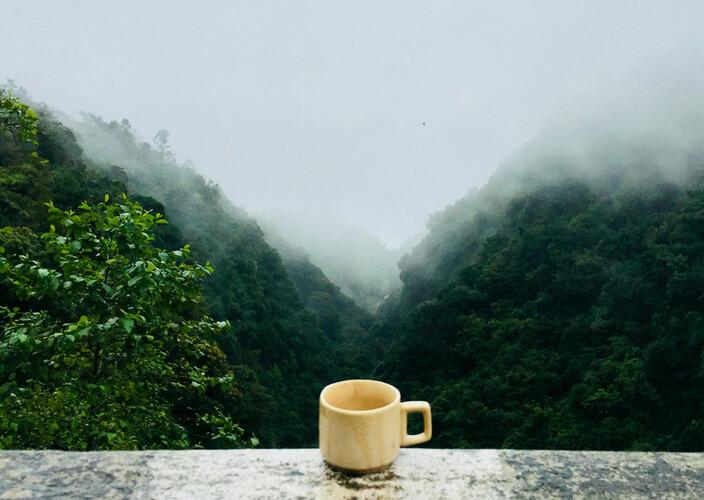 ciekawostki kawowe ze świata - turystyka kawowa